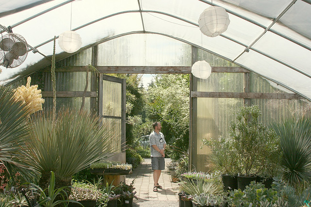 2_dry_greenhouse