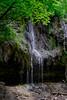 Shadow Falls Picnic-2256.jpg