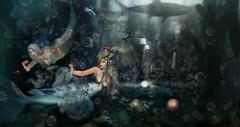 Enchanted  Mermaids