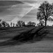 Sunset Shadows by andihun65