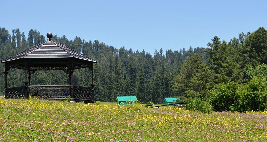Yusmarg, Kashmir.