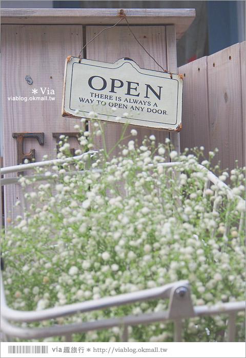 【台中雜貨】小樹苗生活雜貨~一條悠靜小巷弄裡的美好ZAKKA LIFE!8