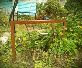 Bike frames as yard art in the Woodlawn neighborhood. These look like they were originally used as bike racks.