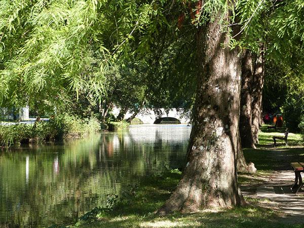rivière la ferté saint aubin
