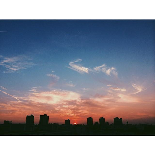 #instagram #shanghai   烽火城西百尺楼,黄昏独坐海风秋 the splendor of the sunset  TEDX活动结束出来天已经暗了,周围的楼缝斜漏出点点金色余晖,我猜今晚的落霞一定很美,于是找最近的一个楼一口气跑10楼顶,就为一睹久违的落霞---可惜这时缺一个跑楼摆pose的模特! #onlyiphone #iphonegraphy #photooftheday #phonegraphy #sky #上海 #落日