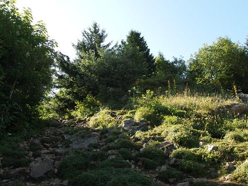 Hike to Croix du Nivolet