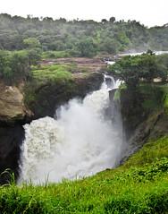 Murchison Falls - Viktoria-Nil , NGIDn2028658223