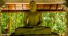 Gautama Buddha - ගෞතම බුදුන්