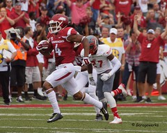 University of Arkansas Football vs Nichols State University