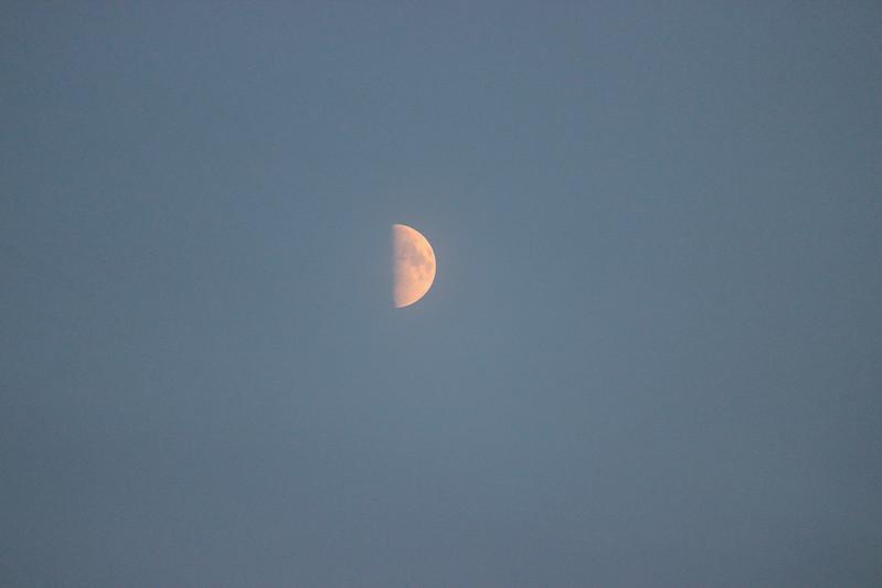 196 av 365 - Nymåne