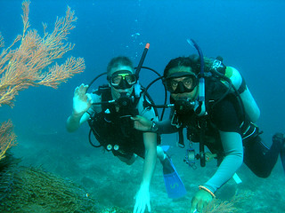 "<img src=""introduction-to-scuba-diving-tioman-island-malaysia.jpg"" alt=""Introduction to Scuba, Tioman Island, Malaysia."" />"
