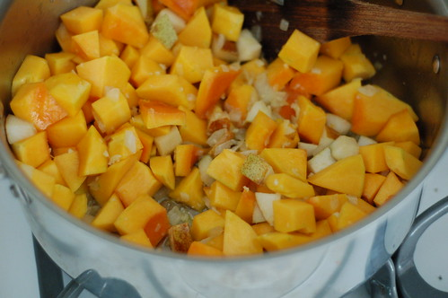 Sauteeing the squash and pears with onions, garlic and sage by Eve Fox, The Garden of Eating, copyright 2014