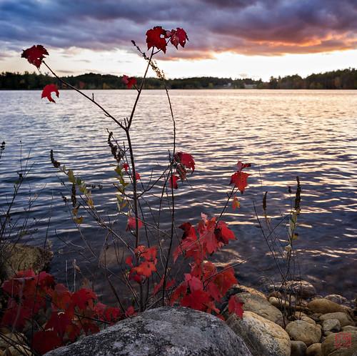 sunset evening tully tullylake zeiss28 vertorama fall2014