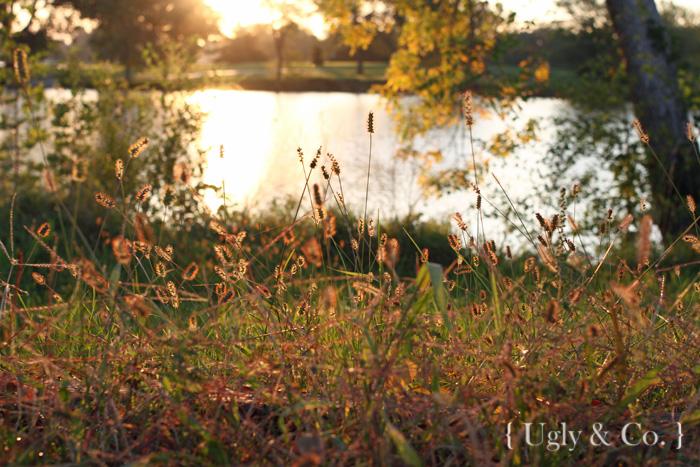 ugco_sept14_sunrise3