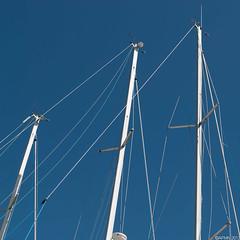 Blue Masts