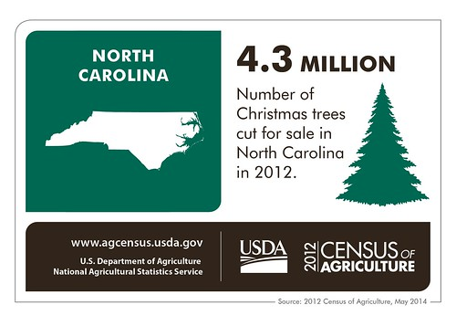 North Carolina sells the largest number of Christmas trees east of the Mississippi River – along with lots of agricultural products.  Check back next Thursday for more information from the 2012 Census of Agriculture and another state spotlight!