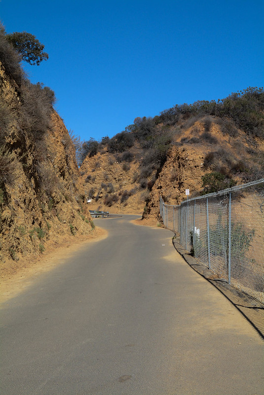 To the Hollywood Sign