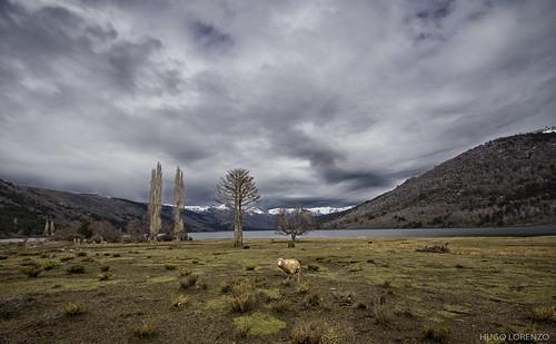 Autor: Hugo Lorenzo