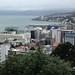 Flying Over Wellington