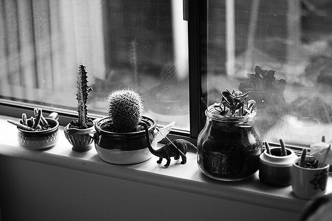 ikkunalauta2
