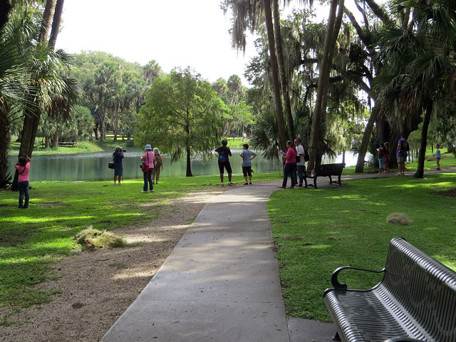 birders at Gemini Springs