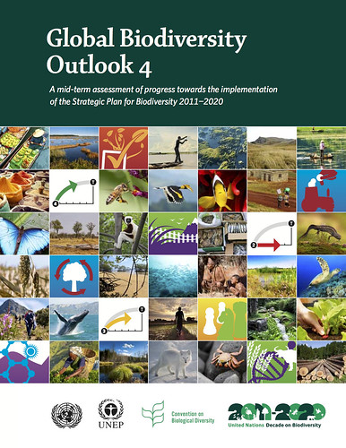 Global Biodiversity Outlook 4 (2014)