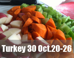turkey30