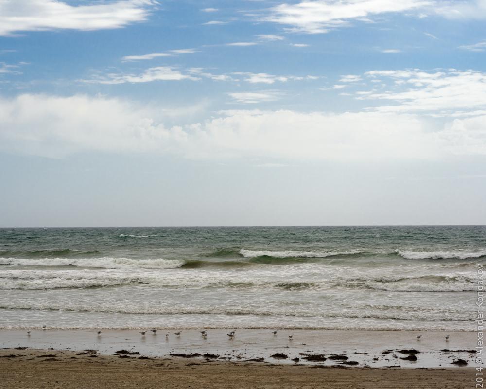 20141006 Aldinga Beach-5
