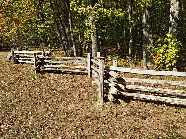 Split-rail fence 20141012