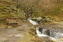 Elan Valley - Gigrin Farm 095