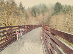 The Buxton Trestle on the Banks-Vernonia Trail is always photogenic. #banksvernoniatrail