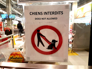 Chiens interdits - No Dogs Allowed