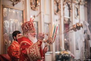 Покровский собор 230