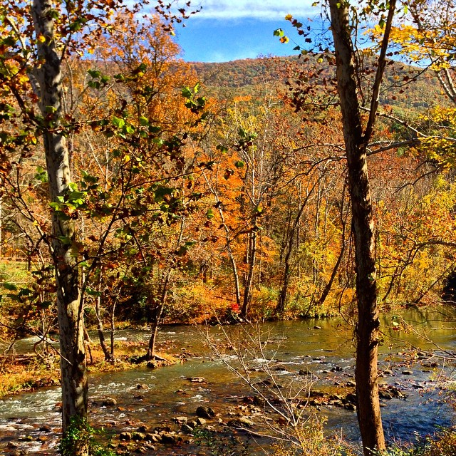 Jackson River #latergram #fall