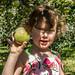 Picking Apples 2