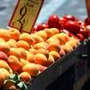 βερικοκιά (Peaches)