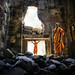 Naga & Buddha by Alessandro Vannucci