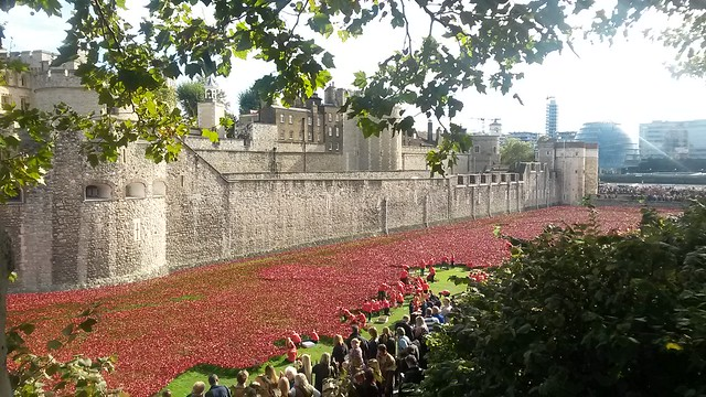 Tower of London Poppy Installation