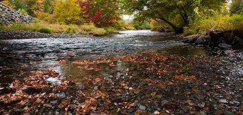autumn fall water canon colours novascotia canonrebel dslr canondslr fallcolours hwy14 canonrebelxsi canonxsi