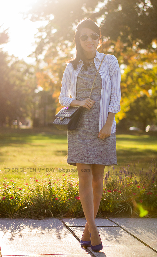 striped button-down top, jeweled tweed dress, blue suede pumps
