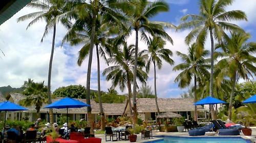 Cook Islands - Umbrellas and Souks5