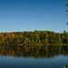 riverbank hues