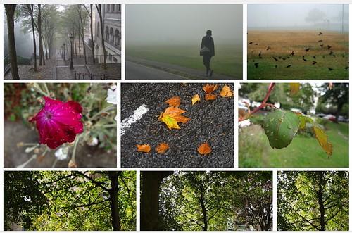 For, rain, then shines again