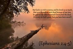 Ephesians 2:4-5 nlt