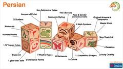Dr. Bashi Persian wood blocks for children!