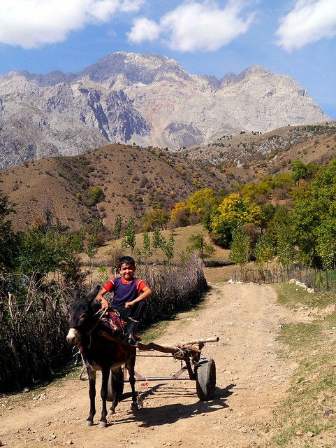 09) Donkey Cart