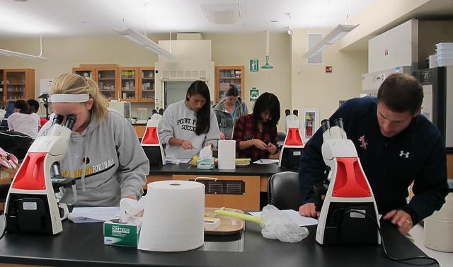 Professor Opdyke's botany class in lab