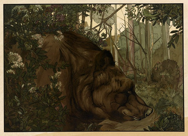 004-Baloo en el bosque-Sixteen illustrations of subjects from Kipling's Jungle Book-1903 -Library of Congress