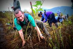 Soneva Forest Restoration Project, Chiang Mai 07