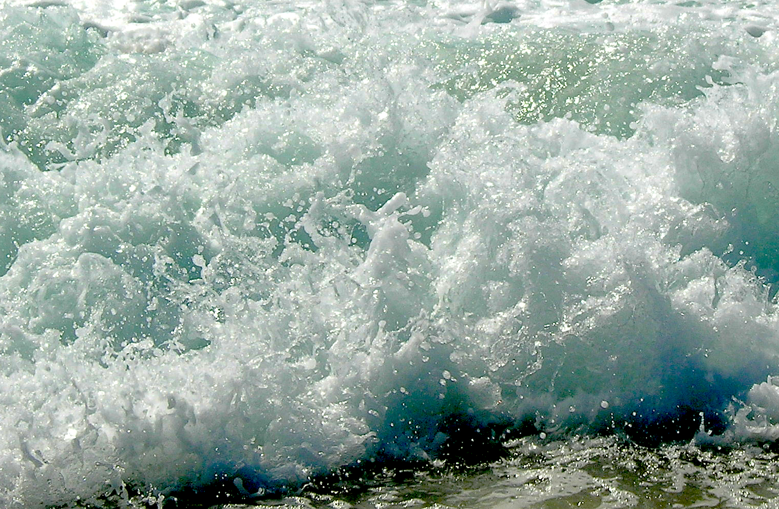 froth1 DSCN4040 crop